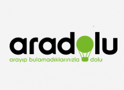 Aradolu.com screenshot
