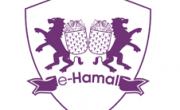 E-hamal.com 15 TL MaxiPuan