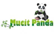 Mucit Panda yılbaşı Kampanyası %40