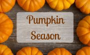 Pumpkin Season 2018