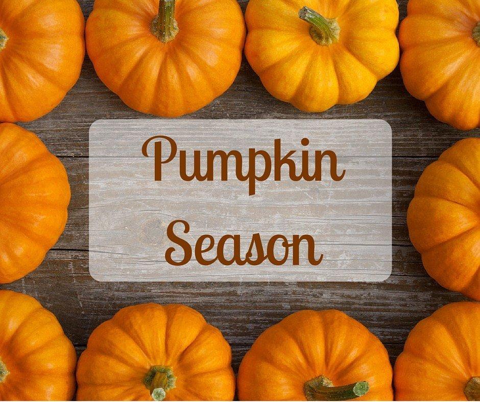 Pumpkin Season 2018